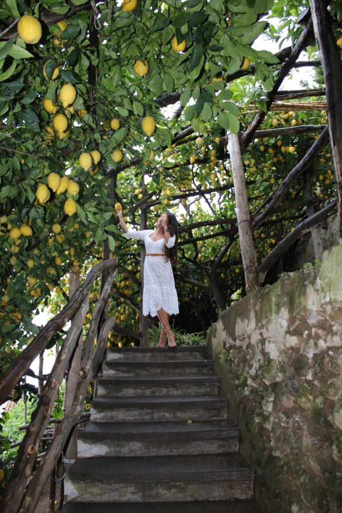 Love & Lemons in Italy