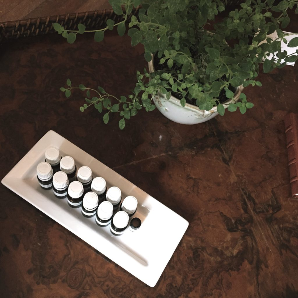 Essential Oils Experience at Tammy Fender