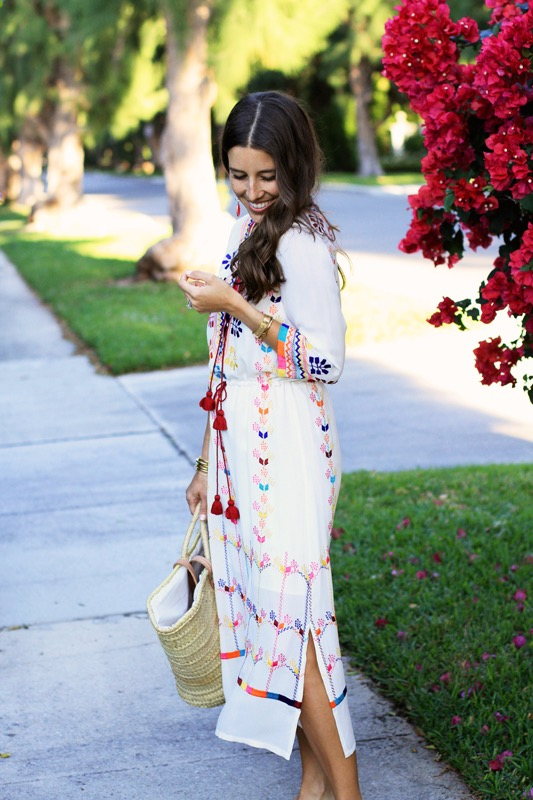 Figue Embroidered Dress 6