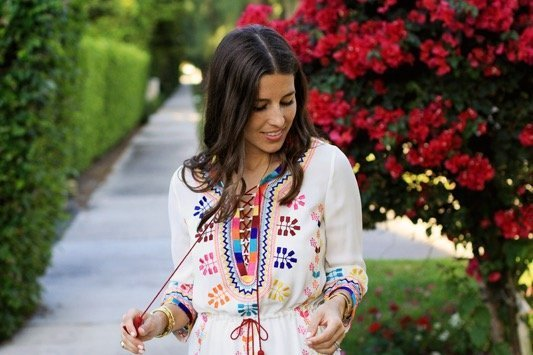 Figue Embroidered Dress 7
