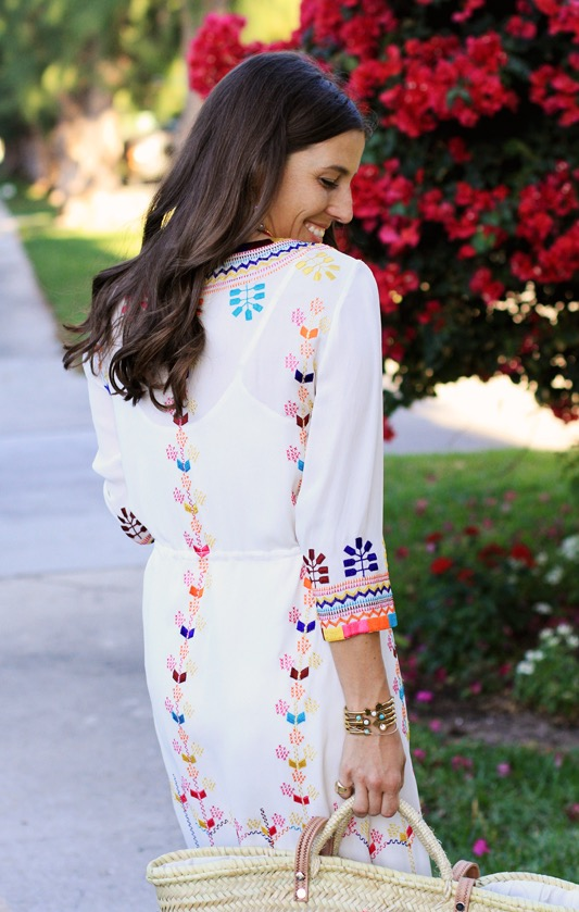 Figue Embroidered Dress 4