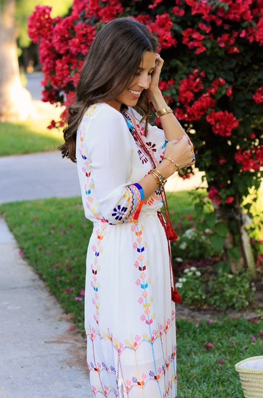 Figue Embroidered Dress 3